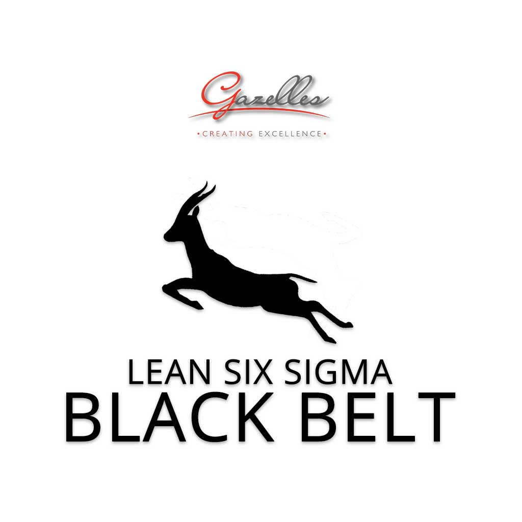 Lean Six Sigma Black Belt (GMC-LSS-BB)