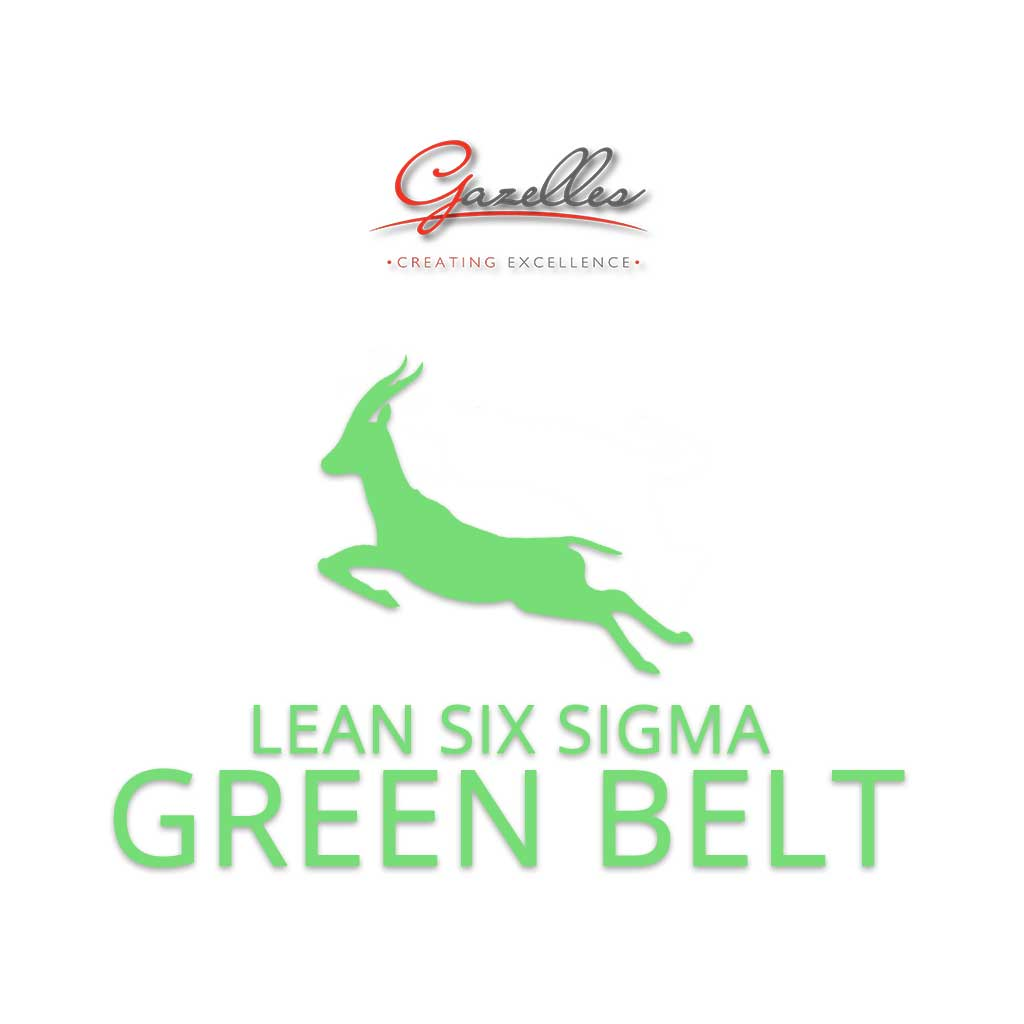 Lean Six Sigma Green Belt (GMC-LSS-GB)