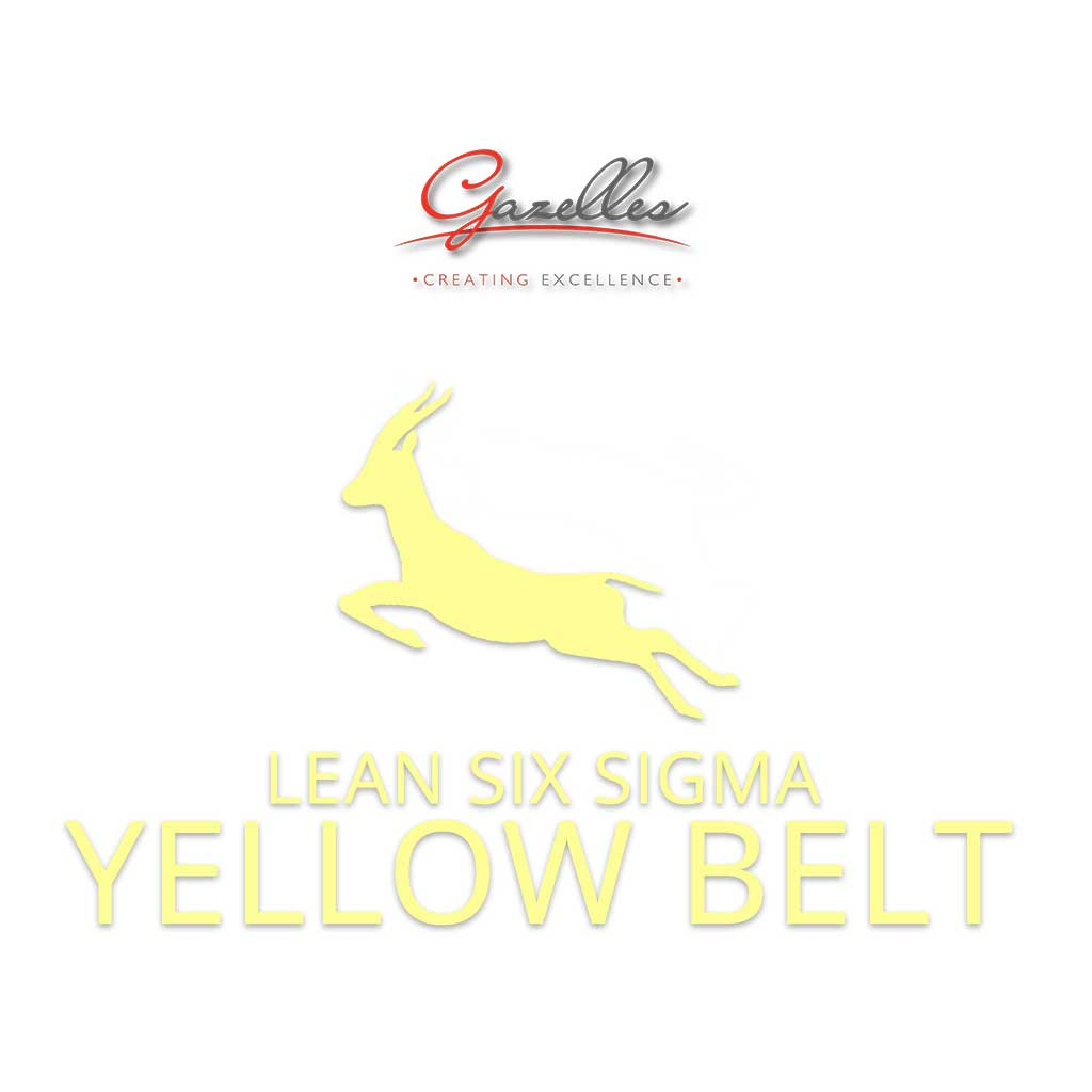 Lean Six Sigma Yellow Belt (GMC-LSS-YB)